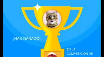 ganador escaperoom tempo 110917
